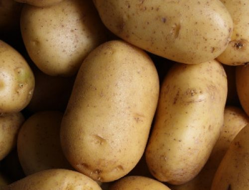 4 Recipes for Celebrate National Potato Month with the Family